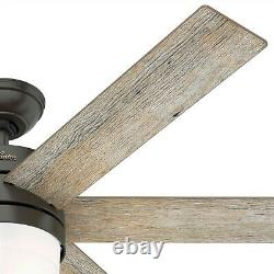 Hunter Fan 54 in Contemporary Noble Bronze Indoor Ceiling Fan w Light and Remote